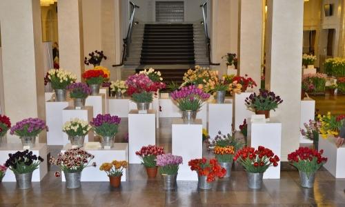 XXII Wystawa Tulipanów 2018